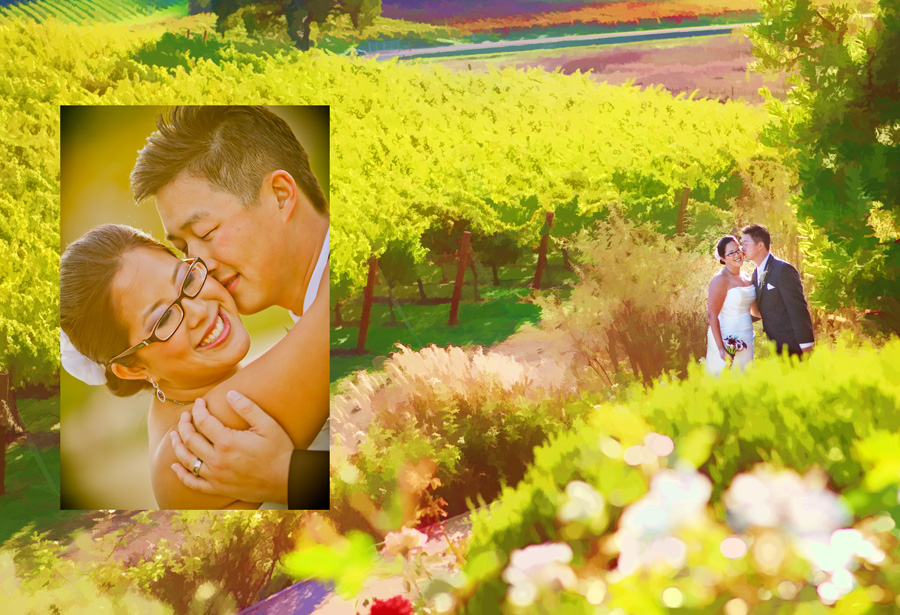 affordable wedding photographer san martin