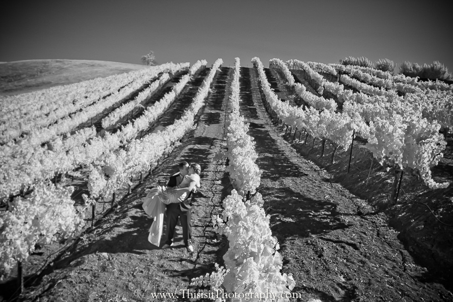 bride and groom Leal Vineyard wedding photo of This is it Photography