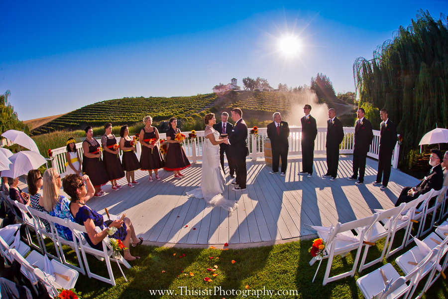 affordable wedding photographer at Leal Vineyards