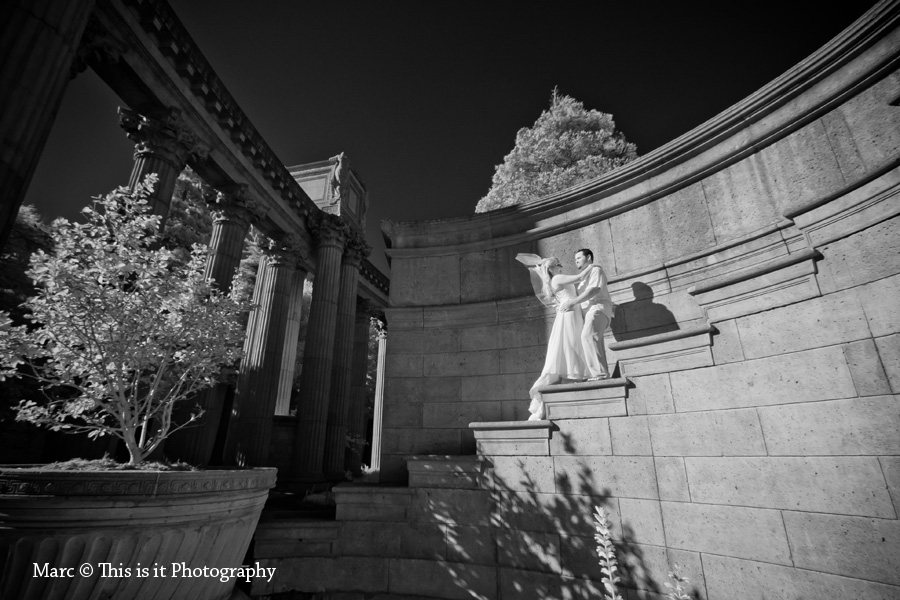 wedding photographer bride and groom photos in palace of fine arts