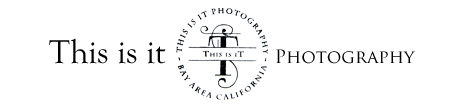 San Francisco Wedding photographer | Bay Area Wedding Photography logo